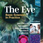 The Eye : Basic Sciences in Practice