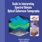 Guide to Interpreting Spectral Domain Optical Coherence Tomography, 2nd Edition