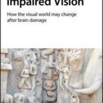 Impaired Vision  :  How the Visual World May Change After Brain Damage